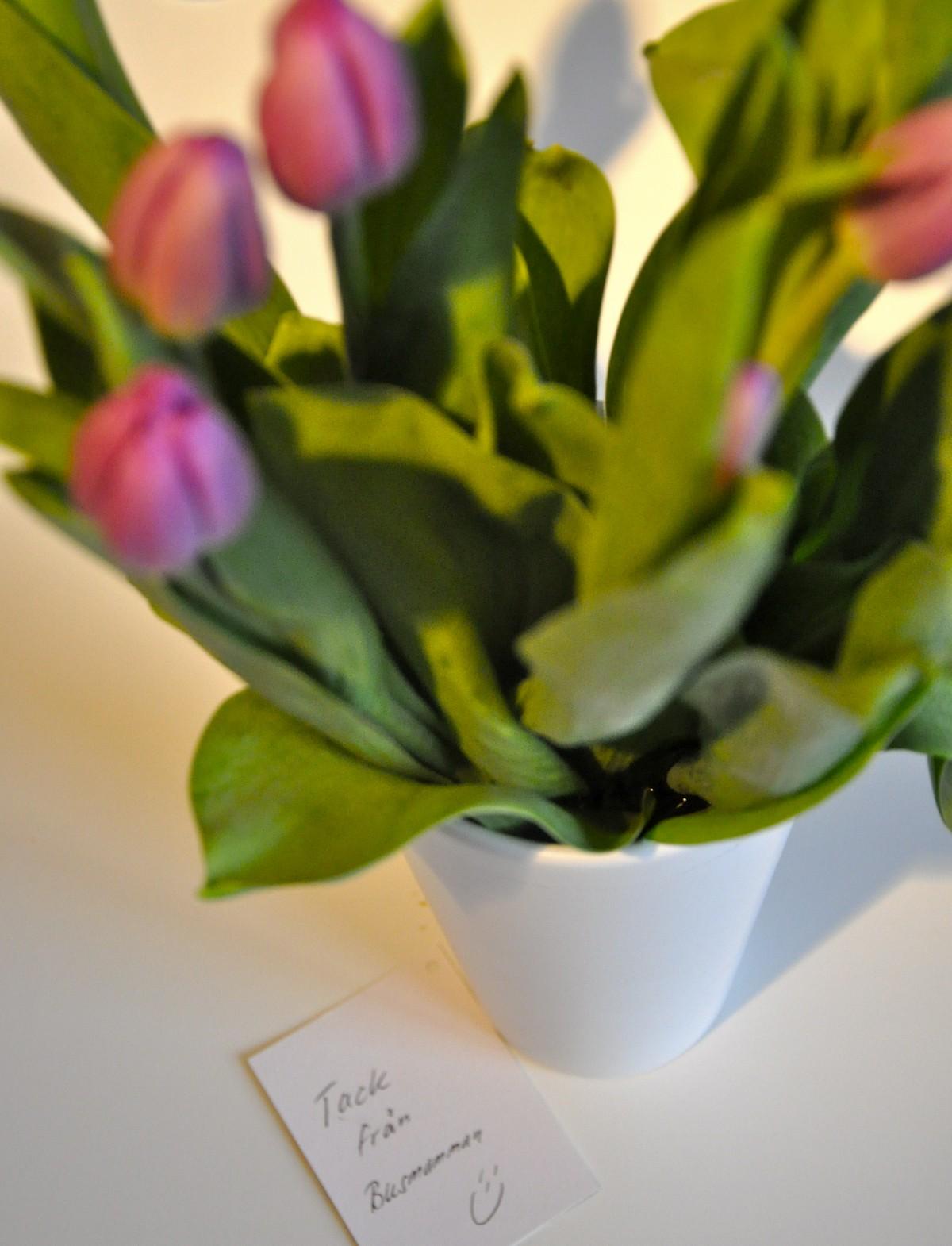 blommor som tack